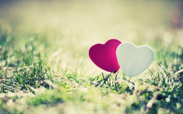 Dashuria, baza e një familje
